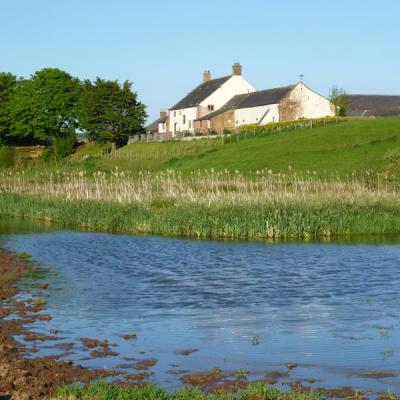 Hadrians Wall Holiday Cottage